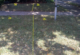 Lawn Sections 2a, 2b, 3a and 3c after spraying with BurnOut II and Nature's Avenger