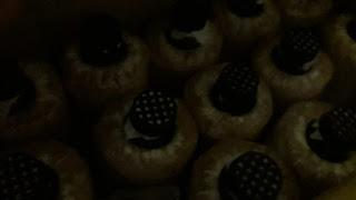 Bongkah cendawan, cendawan tiram kelabu, cara tanam cendawan, mushroom,