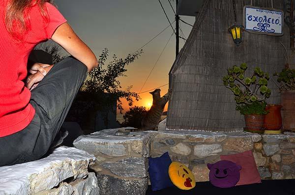 Scholio Bar Sunset 02