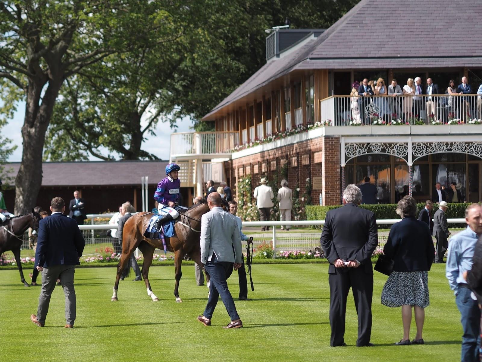 York Races, winners enclosure