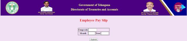 Employee Pay Slip DDOREQ Telangana