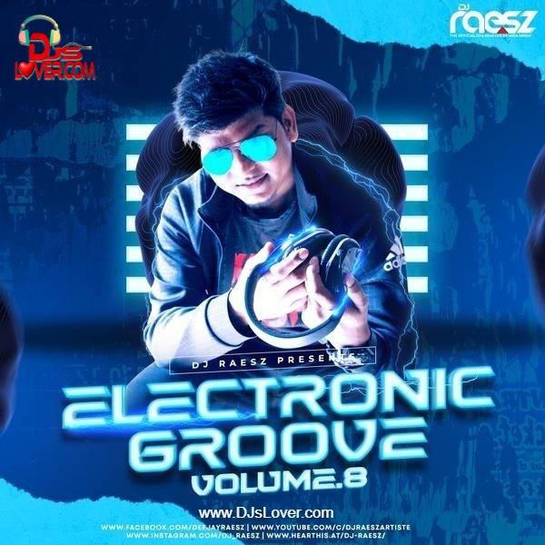 Electronic Groove Vol 8 DJ Raesz