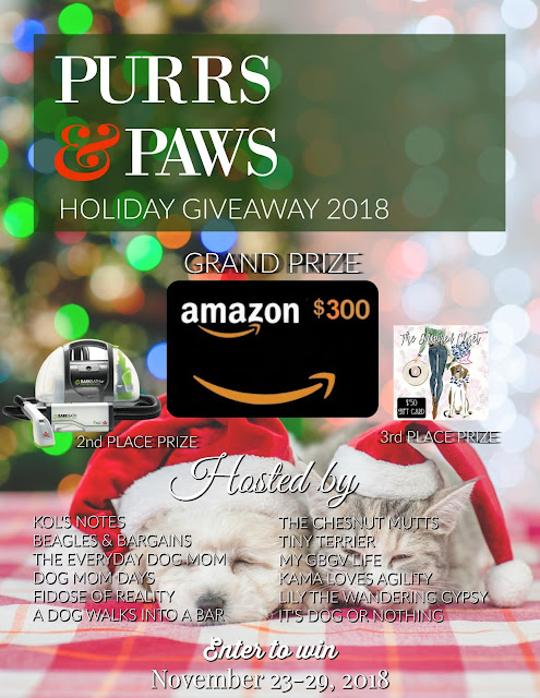 Purrs and Paws Giveaway
