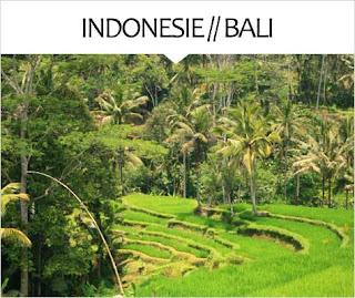 My Travel Background : Voyage Asie Indonésie Bali
