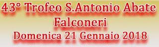 trofeo-san-antonio-abate-falconeri