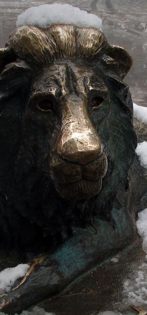 Monumento de Marjan en el Zoologico de Kabul. El último león de Afganistán, Marjan. Un símbolo de sufrimiento de Kabul, el león Marjan. El León más famoso del mundo.