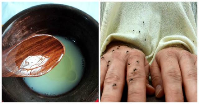 Wow!! Ini Dia Cara Mudah Membuat Lotion Anti Nyamuk Alami..