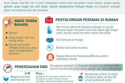 Poster kesehatan Tentang DBD / Demam Berdarah