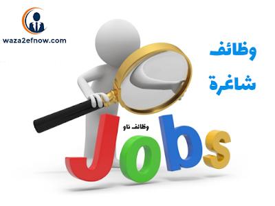 مطلوب محاسبين خبرة وبدون للعمل في مصر
