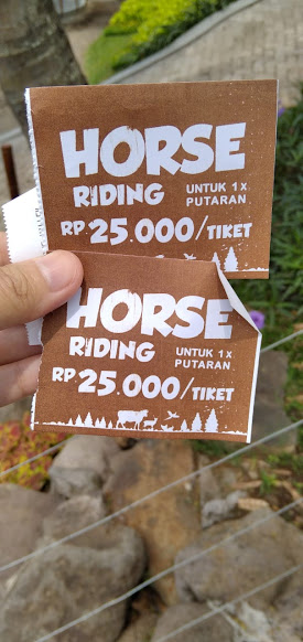 Harga Tiket Horse Riding di Cimory on The Valley