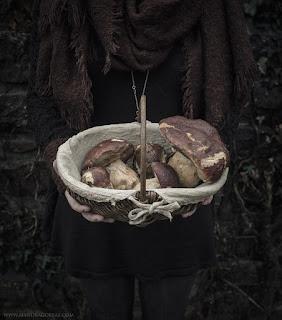 Boletus Edulis, Boletus Aereus, Edible Fungi, Mycology, Autumn Harvest