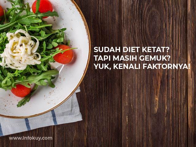 cara diet dan menurunkan berat badan