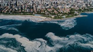Turki Berupaya Atasi 'Wabah Lendir' di Laut Marmara