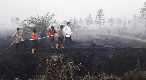 BRG Prioritaskan Pembangunan Infrastruktur di Lahan Bekas Kebakaran