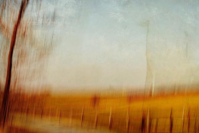 autumn lights, textureblend, photoart, art, abstract, icm, intentional camera movement, gestische Fotografie, Dorothe Domke, Sauerland
