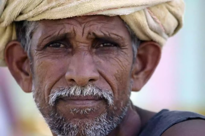 EVERY THING YOU NEED TO KNOW ABOUT FARMER PROTEST IN INDIA