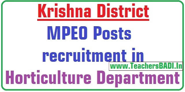 Krishna MPEO Posts,recruitment,Horticulture Department