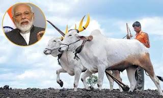 હવે ખેડૂત ભાઈઓ ને ડી. એ. પી. ખાતર ઉપર મળશે 140. ટકા સબ્સિડી... PM MODI
