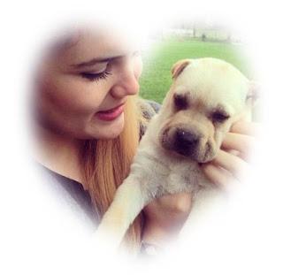 Wiki ALARA TURAN actrita iubeste animalele