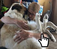 https://www.omachoalpha.com.br/2019/11/19/cachorro-22/