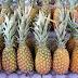 Dieta de la piña - Receta Fácil - Adelgazar 5 Kilos Rápido
