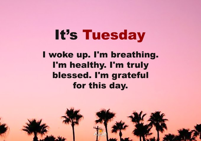 It's Tuesday!