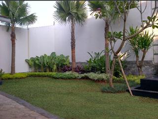 Tukang taman samarinda, balikpapan, pontianak, palangkaraya, kalimantan