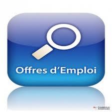 Offre_d'emploi:_Assistant(e)_bilingue_mandarin_/_anglais