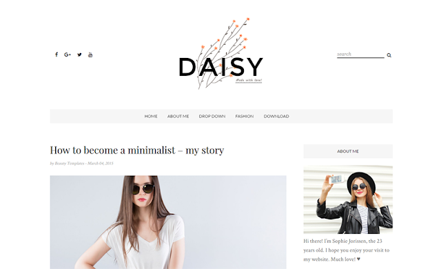 Features Of Daisy Responsive Personal Blogger Template