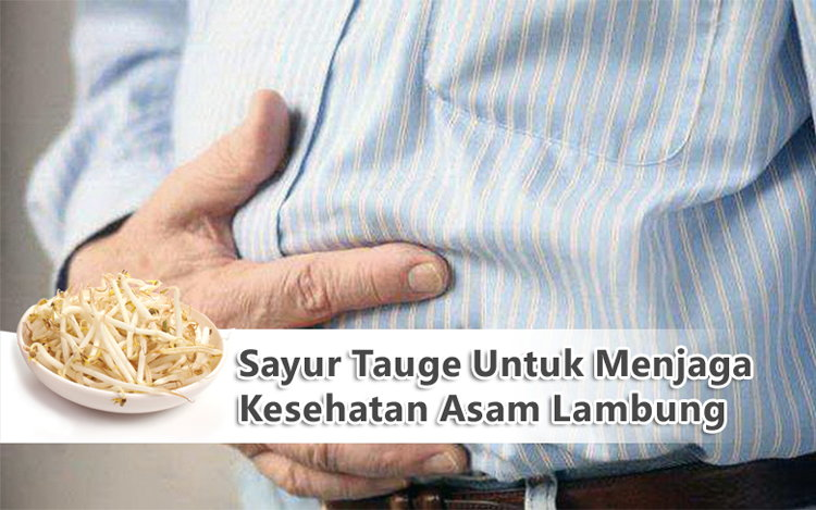 Sayur Tauge Untuk Menjaga Kesehatan Asam Lambung