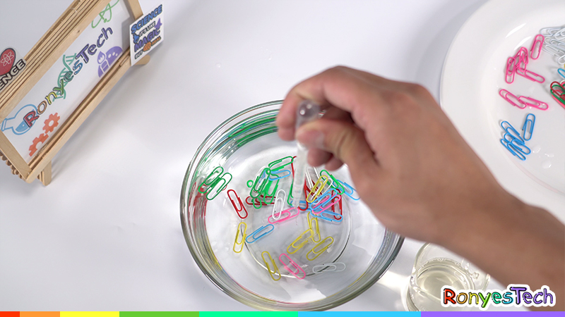 Floating paper clip science experiment