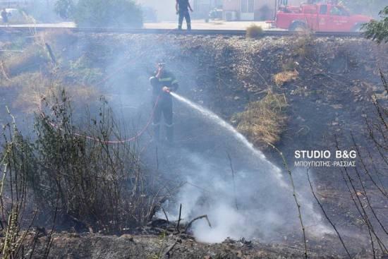 Φωτιά στη Νέα Κίο Αργολίδας - Εκδηλώθηκε στο ίδιο σημείο με χθες