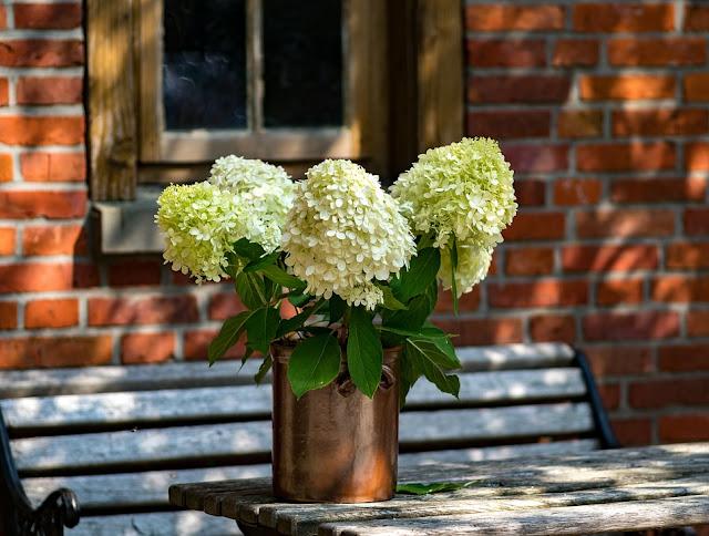 Jak wybrać meble do ogrodu i na balkon?