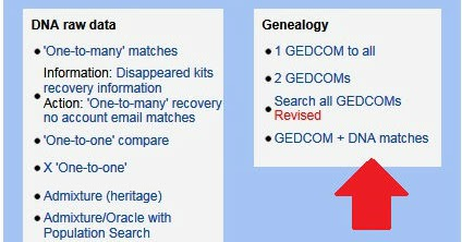 The Blundering DNA Genealogist: GEDmatch Tool: Gedcom + DNA Matches