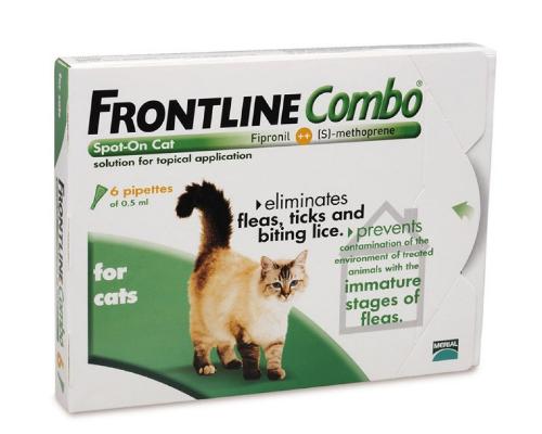 Frontline Combo Spot On Katze