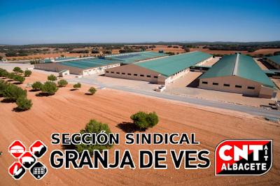 CNT-IAA Albacete - Granja de Vez 2018