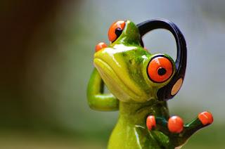 Green frog with headphones