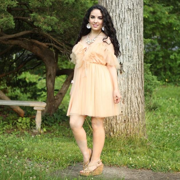 SHEIN Peach Net Dress
