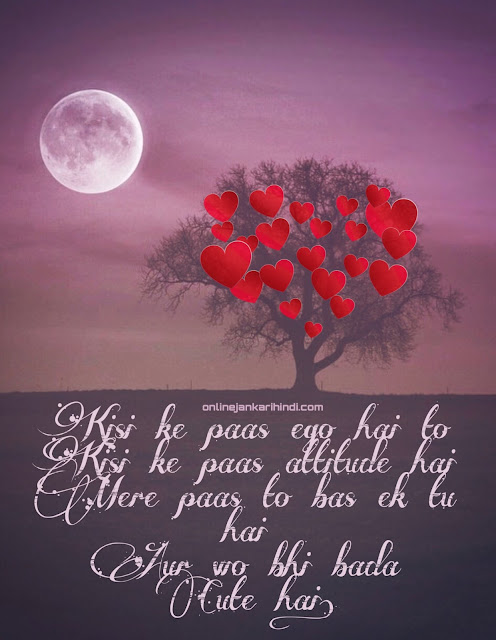 Rose Day Dp For Whatsapp