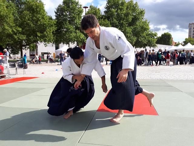 Technique Aikibudo ashi tori oshi taoshi