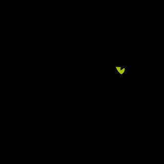 Web Panther