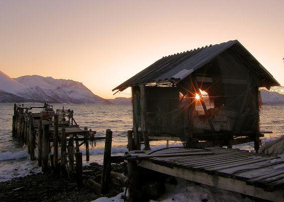 Arnoya, ilta-aurinko, Arin kuva