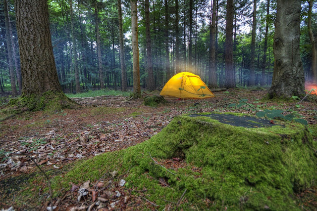 how to choose a campsite tips