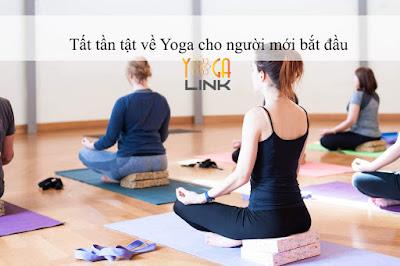 Tần tất tật về Yoga cho người mới bắt đầu