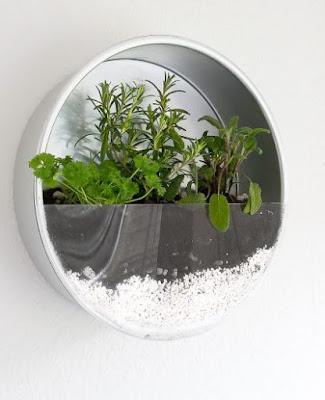 idées de jardin d'herbes arrières pinterest