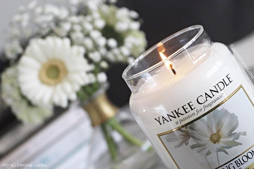 płonący knot w świecy yankee candle