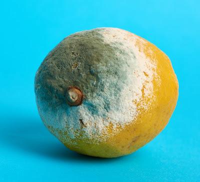 Naranja_con_moho
