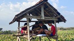 Menempuh Pendidikan di Desa Saat Pandemi Covid-19