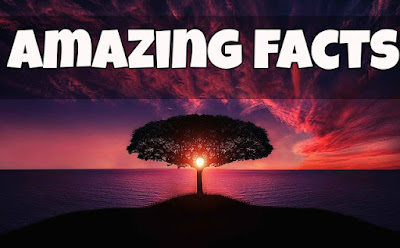 [Ajab Gajab Facts] ऐसे तथ्य जिसे पढ़कर आप भी कहेंगे वाह