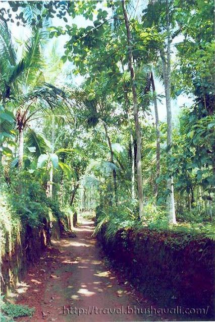 Cheravannur village in Kozhikode Kerala